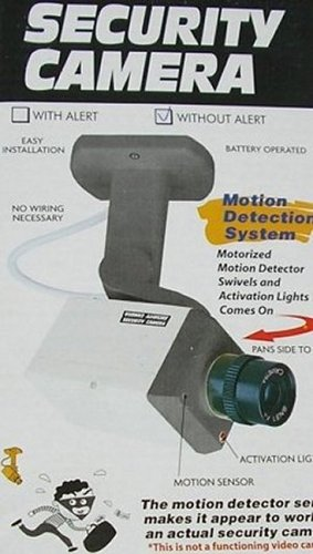 Dummy security camera – motion detection