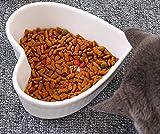 LIUQIAN Pot di Ceramica Gatto Ciotola Gatto spuntino Piatto Gatto Cibo Piatto Gatto Cibo Ciotola Pet Supplies