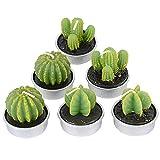 DEOMOR 6pcs Velas Cactus Té Tealight Velas de Planta Suculenta Verde Decoración de Hogar Navidad Fiesta Boda Cafetería 4,2cm 3 Diseños