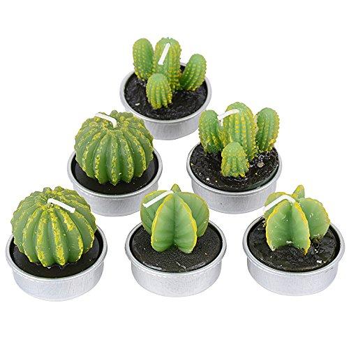 6 Stück 3 Arten Kaktus Kerzen Kaktus Teelicht Deko Teelicht Kerzen rauchfrei für Weihnachten Hochzeit Geburtstag Party Halloween Festival oder Ausgang Dekoration