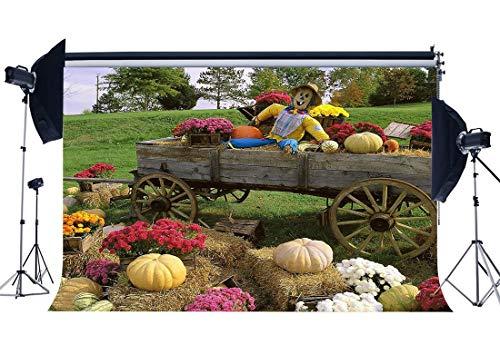 erbst Ernte Hintergrund Kürbis Vogelscheuche Stroh Heuhaufen Vintage Bauernhof Auto Frische Blumen Dschungel Wald Gras Wiese Fotografie Hintergrund Halloween Foto Studio YX596 ()