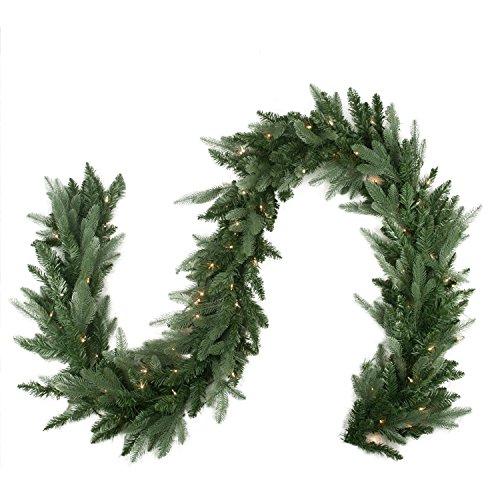 North Light 9'X 30,5cm beleuchteter Washington Frasier Tanne Künstlicher Christmas Garland-Klare Lichter (Frasier Tanne)