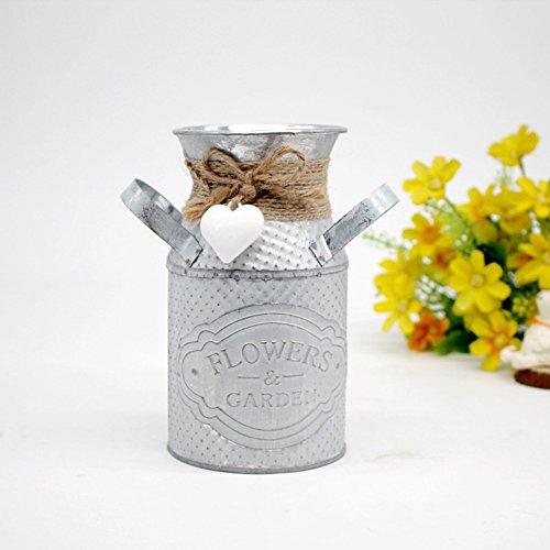Ruier-hui - Jarrón de flores de hierro metálico, sencillo e innovado