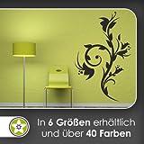 Schöne Blüten Ranke Wandtattoo in 6 Größen - Wandaufkleber Wall Sticker