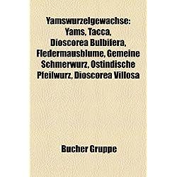 Yamswurzelgewachse: Yams, Tacca, Dioscorea Bulbifera, Fledermausblume, Gemeine Schmerwurz, Ostindische Pfeilwurz, Dioscorea Villosa
