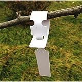 G2Plus - 200 etiquetas identificativas de plástico para plantas o árboles, 2cm x 20cm