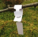 G2PLUS 200Stk. Weiß Plastik Pflanzenstecker StecketikettenBeschriften Pflanzschilder Schilder 2CM * 20CM Sind Praktisch für Kindergarten