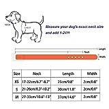 La Vie Hundehalsband, größenverstellbar, PU-Leder, mit Strassbesatz, für kleine Hunde / Katzen, in 2 verschiedenen Größen erhältlich - 2