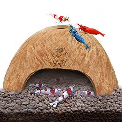 SunGrow Coco Shrimp Cave, 5x3 Inches, Coco Hut, Comfortable Hideout for Crustaceans, Perfect Breeding Area, Promotes… 1
