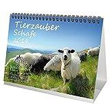 Tierzauber Schafe · DIN A5 · Premium Kalender/Tischkalender 2019 · Bauernhof · Natur · Tiere · Geschenk-Set mit 1 Grußkarte und 1 Weihnachtskarte · Edition Seelenzauber