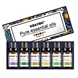 Ätherische Öle Set, Anjou Aromatherapie Duftöl, 100% Pur, 6 x 10 ml (Lavendel, Teebaum,Rosmarin, Zitronengras, Orange, Pfefferminze)