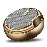 Tlgf Drahtloser Bluetooth-Lautsprecher, Stereo-Bluetooth-Dual-Driver-FM-Radio-Lautsprecher, Glatte Legierung Körper Eingebaute MIC,Gold
