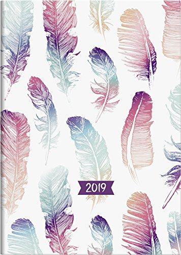 Brunnen Buchkalender 2019 Grafik Federn, A5: 1 Seite = 1 Tag. Modell 795