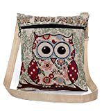 Flache Umhängetasche | Schultertasche | Stofftasche | Tragestasche | Messenger Bag für Damen im bestickten Ethno Style mit lustigem Eulenmotiv (Bunt)