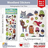 Fun Stickers Woodlands Foxes & Owls 1064