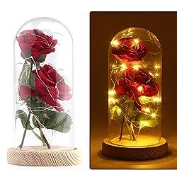 """La Belle et la Bête   Remportez la magie du film """"La Belle et la Bête"""" avec cette rose enchantée inspirée du film.    Enveloppé de lumières LED   Cette rose est enveloppée de lumières LED pour représenter la magie à l'intérieur. Les lumières sont a..."""
