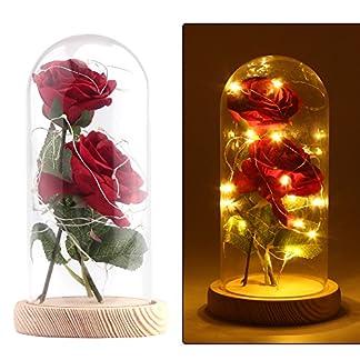 Vingtank 2 PCS seda artificial rosa con 20-LED luz de tira en una pantalla de vidrio blanco cálido Gran regalo para la esposa, novia, cumpleaños, día de la madre, aniversario de bodas, día de San Vale