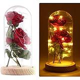Rose Artificial Silk Sparkle Rose con pantalla de vidrio 20-LED Strip light Blanco cálido Gran regalo para el día de San Valentín Día de la madre Cumpleaños de Navidad (Rojo)