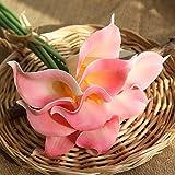huichang Unechte Blumen Callalilie, 5 Stück Künstliche Callalilie Blumen zur Dekoration Haus Garten Party Blumenschmuck (D)