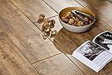 Bodenfliese Celtis honey 60x17,5cm / Holzoptik (1 Paket / 1,05 m² Wood) - 14,95€ pro qm²