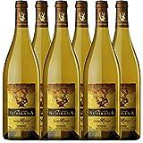 Canals Canals Subirana Chardonnay, Premium-Weißwein (6 x 0,75 l)