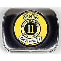 Pequeña caja de Geminis - Imanes de la palabra - Los gemelos Imán del refrigerador Juego de la poesía