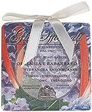 Nesti Dante 6643-04 Gli Officinali Hydrangea & Rhubarb