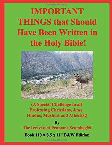 IMPORTANT THINGS that Should Have Been Written in the Holy Bible!: (A Special Challenge to all Professing Christians, Jews, Hindus, Muslims and Atheists!) B&W Edition!