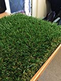 Synthetic Grasses Review and Comparison