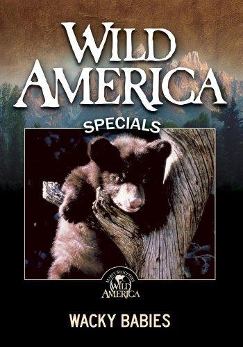 wild-america-wacky-babies-by-marty-stouffer