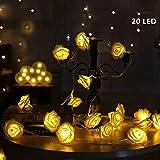 Guirnalda Luminosa de 20 LED,Rosas Luz Cadena,GKONGU 2.2 m Funciona con Pilas Navidad Luz – Blanco Cálido