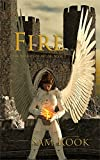 Fire (The Knights of Av'lor Book 3) (English Edition)