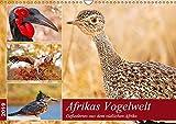 Afrikas Vogelwelt 2019 (Wandkalender 2019 DIN A3 quer): Gefiedertes aus dem südlichen Afrika (Monatskalender, 14 Seiten ) (CALVENDO Tiere) - Wibke Woyke