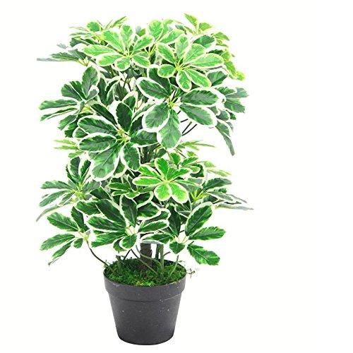Leaf 55cm Künstliche Schefflera arboricola Umbrella Tree Topf -