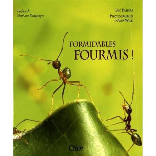 Formidables fourmis !: Un peuple conquérant