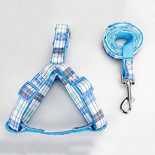 Hund Leine Kragen Jin Mao Taidi mittlere kleine Welpen Hund Seil Seil Hund Kette Haustier liefert,E,S