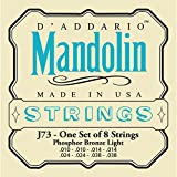 D\'addario Phosphor Bronze EJ73 10-38 Light - jeu de cordes pour mandoline