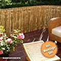 Videx-Sichtschutzmatte Schilfrohr Föhr, 100 x 600cm mit 75 Schlaufen von Videx bei Du und dein Garten