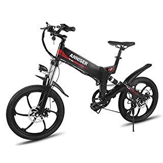 ANNISER Electric Bikes 20 Inches, Folding Electric Mountain Bike, 250W 48V Lithium Battery Aluminum Alloy Electric Assisted Bicycle,Women Men Electric Bicycle (Black)