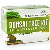 Kit Bonsai - Kit per crescere il tuo Albero Bonsai a partire dal seme - Regali originali per amanti giardinaggio e piantine - Set Regalo con 5 varietà di Alberi Bonsai - Con istruzioni