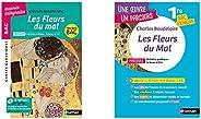 BAC de français 2020, Les Fleurs du mal, texte et explication