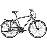 Bergamont Horizon 3.0 Herren Trekking Fahrrad grau/blau 2018: Größe: 56cm (178-186cm)