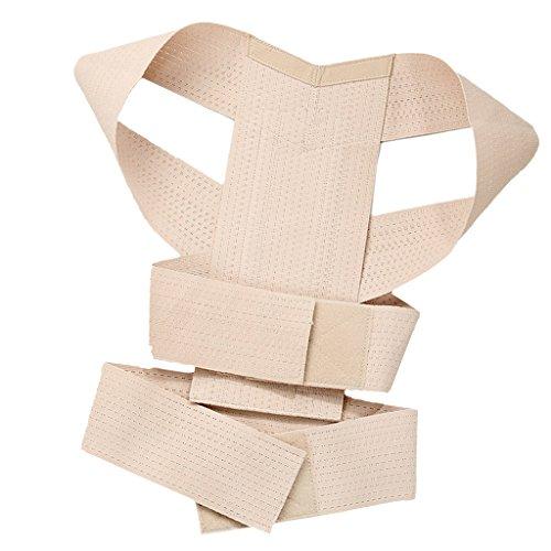 Gazechimp Verstellbar Geradehalter zur Haltungskorrektur Bandage für ein deutlich verbesserte Körperhaltung, Haltungsbandage für Rücken Schultern und Taille Unterstützung