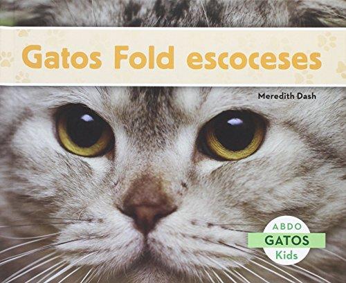 Gatos Fold Escoceses (Gatos / Cats)