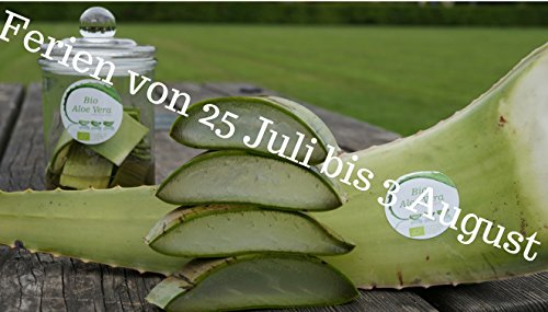 Bestes Bio Aloe Vera Blatt, Health for All