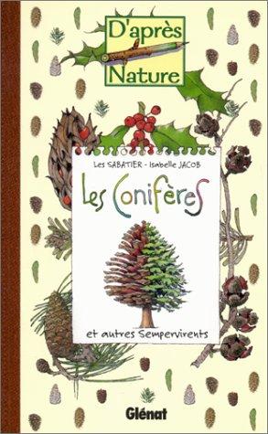 les-coniferes-et-autres-sempervirents