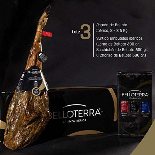 Belloterra Lote 3: Jamón de Bellota Ibérico (8,0-8,5 kg) y Surtido Ibéricos Caña de Lomo, Salchichón y Chorizo Ibéricos de Bellota (1,6 - 1,8 kg aprox) en Caja Regalo