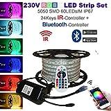 Lipsia - Striscia LED RGB da 230 V H+H multicolore, tubo luminoso, striscia luminosa (5050 SMD 60 LED/M IP67) con telecomando a 24 tasti, 20 Meter, BT(Bluetooth+Infrarot)-Controller