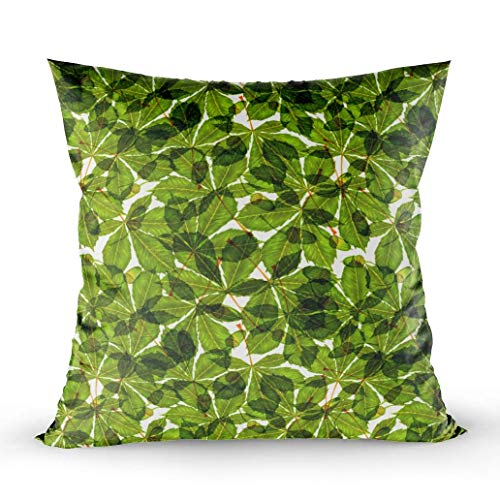 Horse Chestnut Leaf (BaBat Holiday Pillow Covers,Zippered Covers Pillowcases 18X18Inch Throw Pillow Covers Green Fresh Horse Chestnut Leaves Pattern Natural Simple Background White for Home Sofa Bedding)