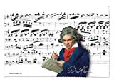 Fridolin 18858 Beethoven Cleaning Cloth for Glasses Chiffon 18 x 12.5 x 1 cm Multi-Coloured